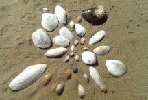 Morze / Fotografie nadmorskie