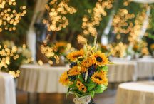 Wedding decorations / Sun Flowers theme