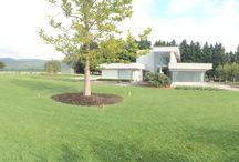 The American dream / Moderná záhrada. Záhradna architektúra.