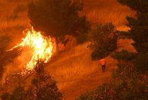 incendios chile 2017