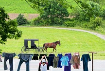 Amish Country Landscapes
