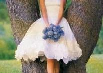 Wedding dresses / by Lauren Siegel