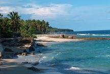 Indonesië - Molukken / De Molukken bestaan ongeveer uit zo'n 1000 eilanden, zowel tropische als vulkanische eilanden. De specerijenhandel vormde vroeger de belangrijkste inkomstenbron, tegenwoordig is dat vooral eigen landbouw, zoals bananen, bonen, zoete aardappels en soms rijst.