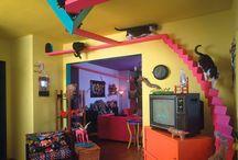 Cat's Play / Cat furniture, cat climbers, cat's play, cat shelves, cat window shelves