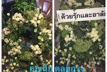 Flower lover / Flower arrangement