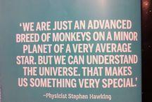 Stephen Hawking / by Rachel Cosford