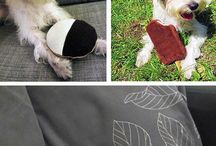 Dog Toys / Homemade Dog Toys and Safe Toys for your Pet