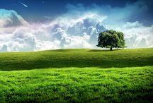 Beautiful nature lanscape