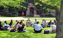 Higher Education Reform / by Dena Rosko