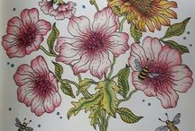 Coloring books for adults / Coloured By Karin Persson