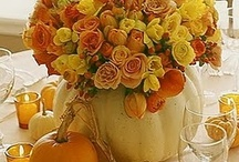 Fall Decorating / by Donna Harris
