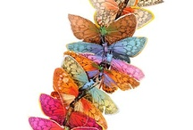 Butterflies / by Christine Campbell