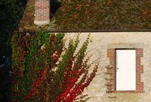 A YEAR IN NORMANDY : L'AUTOMNE -THE FALL at the Haras du Gazon / Normandy through the seasons