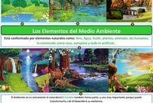 Mapas mental y dibujos medio ambiente / Mapas mentales sobre el medio ambiente, imagenes representativas del ambiente
