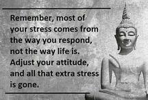 Buda öğretileri