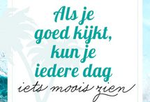 Tekst NL