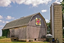 BARNS / by Marie Atwood