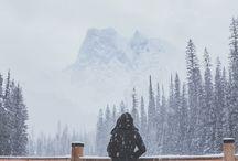 Winter / Winter Wonderland❄️⛄️
