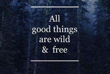 Wanderlust / Travel, Wanderlust and Explore Norway | Travel Quotes |  Adventure