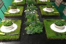 centrum ogrodnicze wnętrze