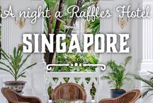 Travel: Singapore / Travel in Singapore
