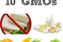 GMO News