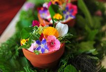 Flores comestibles / Platos y postres con flores /  Dishes and desserts with flowers