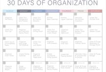 Organizace a úklid