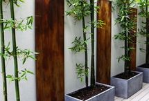 Garden - Landscaping