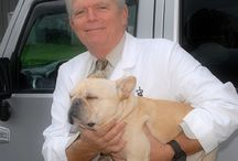 About Us! / All about your veterinary team at Michigan Road Animal Hospital at Crooked Creek.
