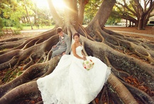 Ideas for our vow renewals / We eloped and it was romantic and perfect.  For our vow renewals, I want a big fairytale wedding since I was lucky enough to find my prince charming and we have two beautiful little ones. / by Leah Eliopoulos
