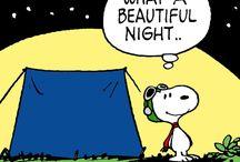Hyvää Yötä