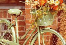 Flori si biciclete