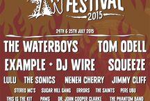 Wickerman Festival, 24-25 July 2015