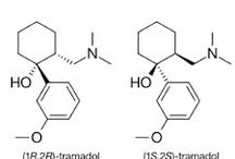 Structure of Tramadol