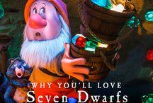 Seven Dwarfs Mine Train / Seven Dwarfs Mine Train / by Walt Disney World