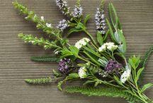 bylinky, liečivé jedlo