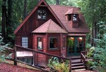 forest tiny houses