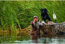 """""""Hunting"""" in North Dakota / Whether you are looking for that perfect bird or deer, or maybe you are """"hunting"""" for that perfect shopping or dining experience...you will find it right here I North Dakota!"""