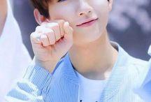 Seventeen// Joshua