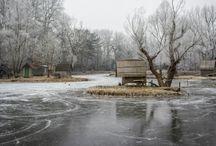 Sződligeti tó
