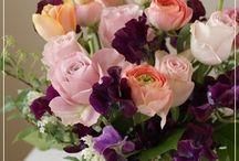 【紫・パープル】生花ギフト / Flower noteの紫色の生花ギフトアレンジのギャラリーです
