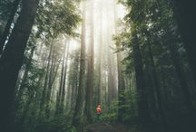 Fotografie | Landschaft, Travel