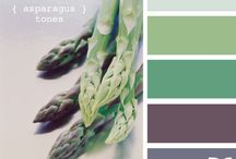 Color Pallets / by Emily Jefford