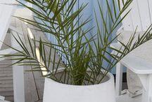 Hage/veranda