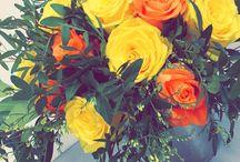 Blomster Praksis / Skole/Praksis