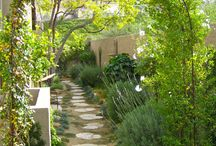 Garden: Patio and Pathway / by B.