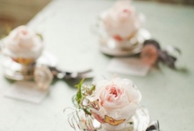 Escort Cards, Guest Book and Table Numbers