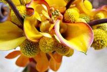 Yellow Weddings / Yellow themed wedding inspiration