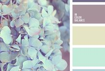 Colour ideas